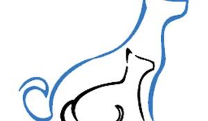 Mascotas-01